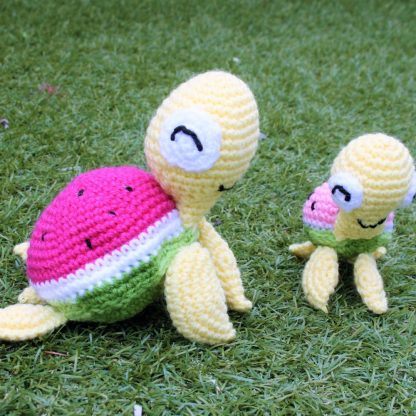 Mother and Baby Turtle in Watermelon Colours Side by Side outside